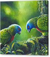 Out On A Limb - St. Lucia Parrots Canvas Print