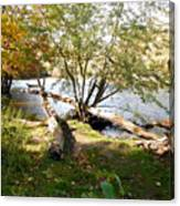 Outdoors Along The Huron River Canvas Print