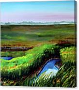 Outgoing Tide Canvas Print