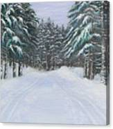 Snow Tracks Canvas Print