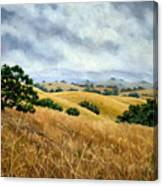 Overcast June Morning Canvas Print