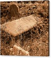 Overgrown Graves Canvas Print
