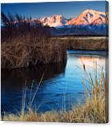 Owens River Sunrise Canvas Print