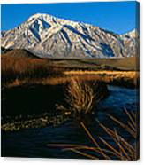 Owens River Valley Bishop Ca Canvas Print