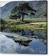 Owenveagh River, Glenveagh National Canvas Print