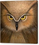 Wise Eyes Canvas Print