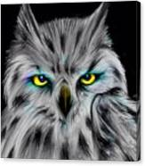 Owl Eyes  Canvas Print
