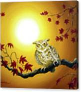 Owl In Autumn Glow Canvas Print
