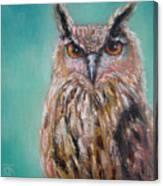 Owl No.5 Canvas Print