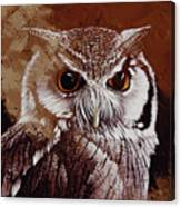 Owl Painting  Canvas Print