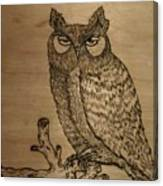 Owl Pyrography Canvas Print