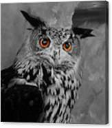 Owls Eye Canvas Print