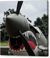P - 40 Warhawk - 5 Canvas Print