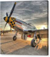 P51d Kimberely Kay And Comfortably Numb At Hollister Canvas Print