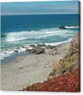 Pacific Coast View IIi Canvas Print