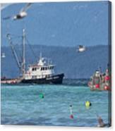 Pacific Ocean Herring Canvas Print