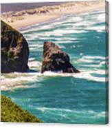 Pacific Ocean Shore Canvas Print