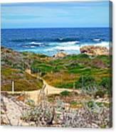 Pacific Pathway Canvas Print