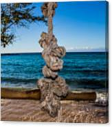 Pacific Rope Swing Canvas Print