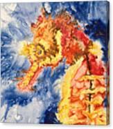 Pacific Seahorse Canvas Print
