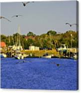Paddle Boarders Vs Birds Canvas Print