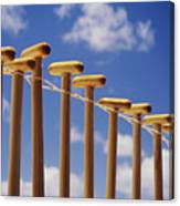 Paddles Hanging In A Row Canvas Print