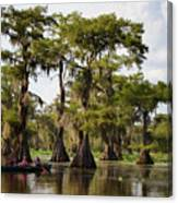 Paddling In The Bayou Canvas Print