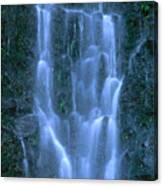 Paihi Falls Canvas Print