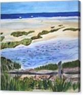 Paines Creek  Canvas Print