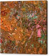 Paint Number 19 Canvas Print