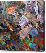 Paint Number 42-c Canvas Print