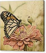 Painted Beauty Canvas Print
