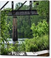 Painted Congaree Four Canvas Print
