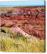 Painted Desert 0242 Canvas Print