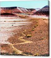 Painted Desert 0319 Canvas Print