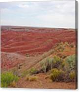 Painted Desert 6 Canvas Print