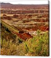 Painted Desert Panorama Canvas Print