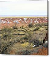 Painted Desert Winter 0571 Canvas Print