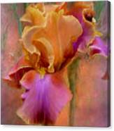 Painted Goddess - Iris Canvas Print