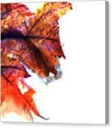 Painted Leaf Series 1 Canvas Print