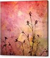 Painted Skies 2 Canvas Print