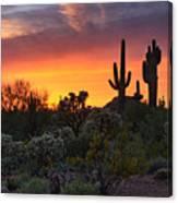 Painted Skies Of The Sonoran Desert Canvas Print