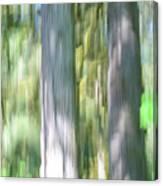Painted Streaked Trees Canvas Print
