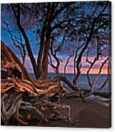 Painted Tree Canvas Print