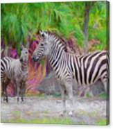 Painted Zebra Canvas Print