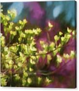 Painterly Dogwood Canvas Print
