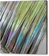 Painting Color Canvas Print