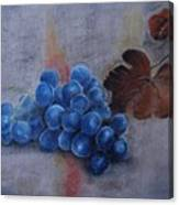Painting Grapes Canvas Print