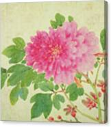 Painting Of Peonies Canvas Print