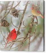 Pair Of Cardinals Canvas Print